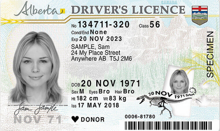 Canadian driver license format